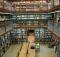 Biblioteconomia