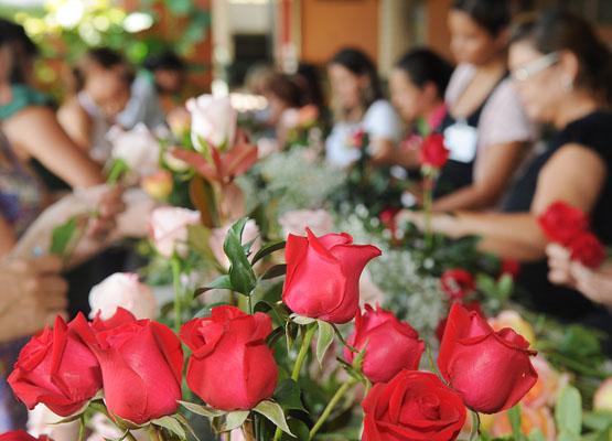 Curso gratuito de florista online