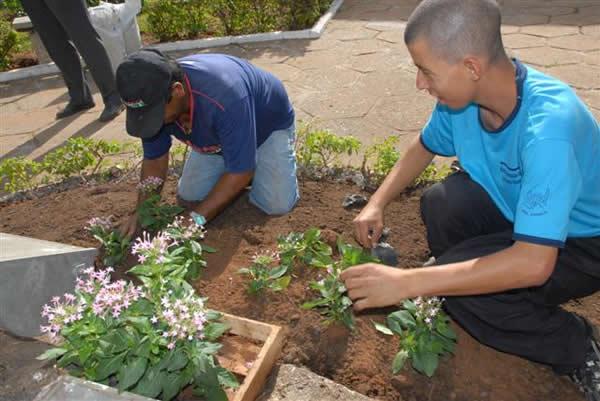 Curso de jardineiro gratuito