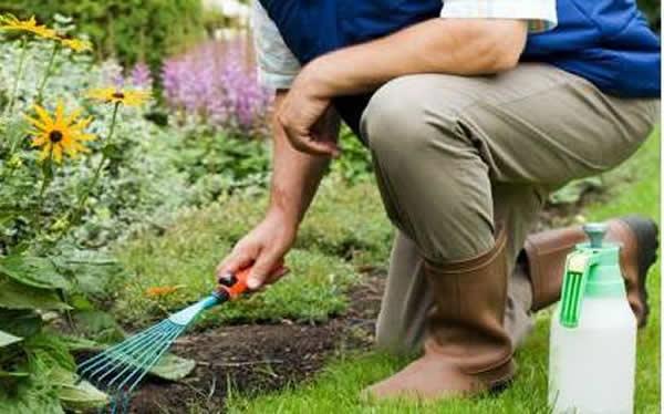 Curso de jardineiro