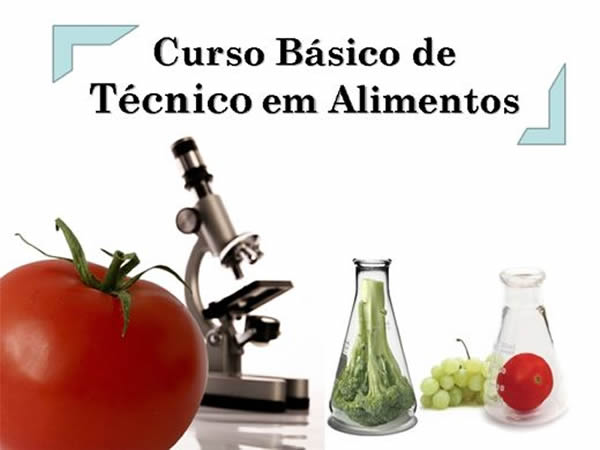 Técnico alimentos 2