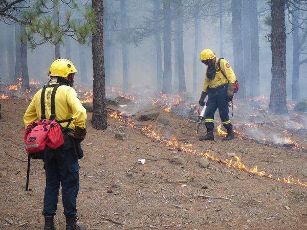 curso gratuito de bombeiro civil