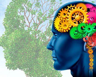 Se você acertar 7 dessas 10 perguntas você deveria tentar a Faculdade de Psicologia 03